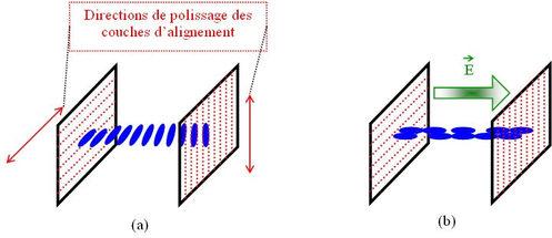 Figure I 10 : (a) Molecular Arrangements In A Cell Of Crystal Liquids